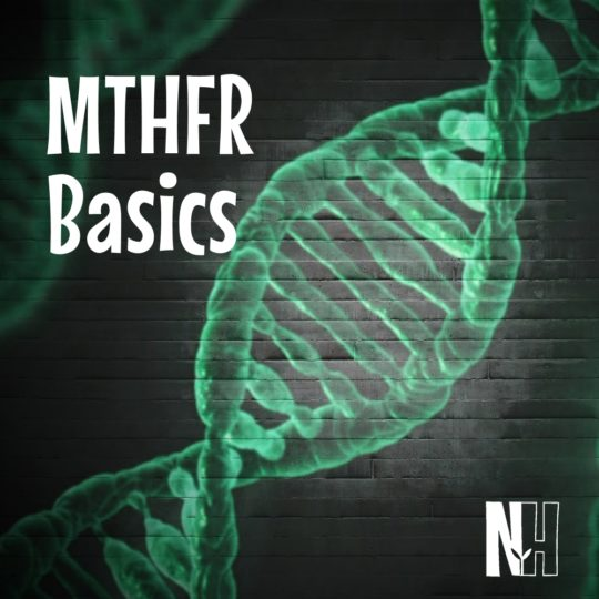 MTHFR Basics at Naturally, Holistically Healthy